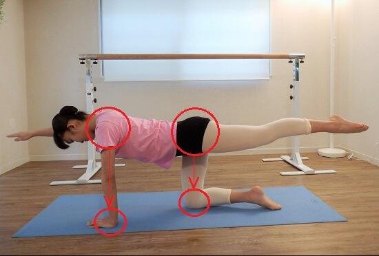 バレエ・体幹トレーニング